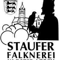 Staufenfalknerei Kolster Lorch