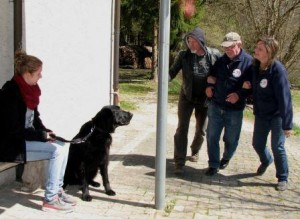 DRK Therapiehund Betrunkene