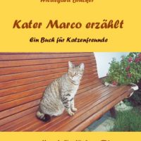 Kater Marco